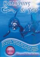Medwyn Goodall. Dolphins & Sea