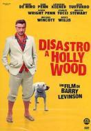 Disastro a Hollywood