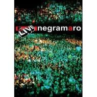 Negramaro. MTV Live
