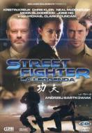 Street Fighter. La Leggenda