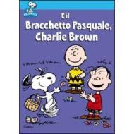 È il brachetto pasquale, Charlie Brown