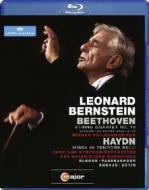 Leonard Bernstein conducts Beethoven & Haydn (Blu-ray)