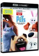 Pets - Vita Da Animali (Blu-Ray 4K Ultra HD+Blu-Ray) (2 Blu-ray)
