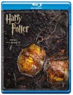 Harry Potter e i doni della morte. Parte 1 (Blu-ray)