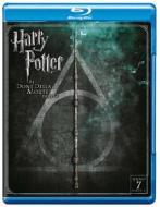 Harry Potter e i doni della morte. Parte 2 (Blu-ray)