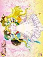 Sailor Moon. Box 3 (4 Dvd)