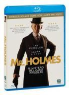 Mr. Holmes. Il mistero del caso irrisolto (Blu-ray)