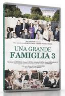Una grande famiglia. Stagione 3 (4 Dvd)