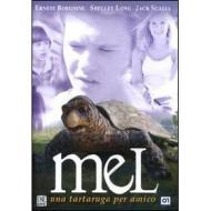 Mel. Una tartaruga per amico