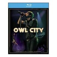 Owl City. Live From Los Angeles (Blu-ray)