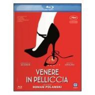Venere in pelliccia (Blu-ray)