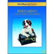 Bernardo, cane ladro e bugiardo