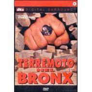 Terremoto nel Bronx
