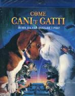 Come cani & gatti (Blu-ray)