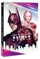 Batman & Robin (Dc Comics Collection)