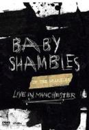 Babyshambles. Up The Shambles. Live In Manchester