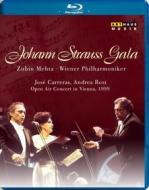 Johann Strauss Gala. Open Air Concert in Vienna, 1999 (Blu-ray)