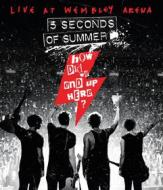 5 Seconds of Summer. How Did We End Up Here? (Blu-ray)