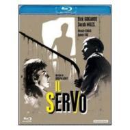 Il servo (Blu-ray)
