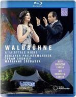 Berliner Philharmoniker - Waldbuhne 2019: Midsummer Night Dreams (Blu-ray)