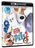 Pets 2 - Vita Da Animali (Blu-Ray 4K Ultra HD+Blu-Ray) (2 Blu-ray)