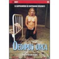 Oedipus orca