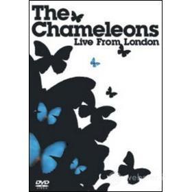 The Chameleons. Live From London