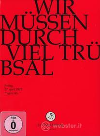 Johann Sebastian Bach  - Wir Muessen Durch Viel Trebsal