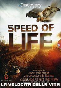 Speed of life. La velocità della vita (2 Dvd)