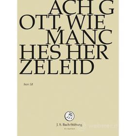 Johann Sebastian Bach  - Ach Gott, Wie Manches Herzeleid