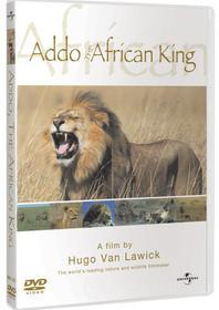 Hugo Van Lawick - Addo - The African King