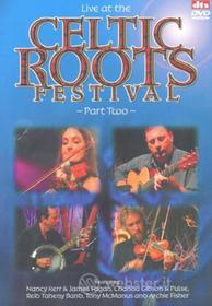 Live At The Celtic Roots Festival Part 2