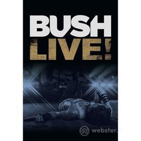 Bush. Live!