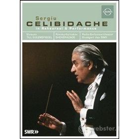 Sergiu Celibidache. In Rehearsal And Performance