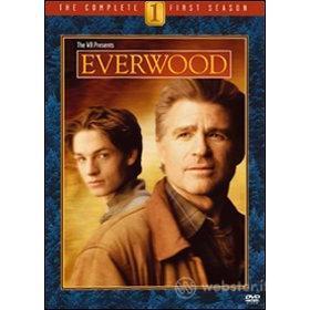 Everwood. Stagione 1 (6 Dvd)