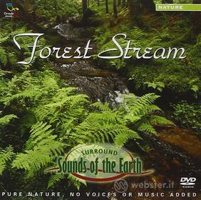 Sounds Of The Earth - Forest Stream (Dvd Audio)