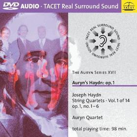 Joseph Haydn - Vol. 17-Auryn Series-Auryn's H (Dvd Audio)