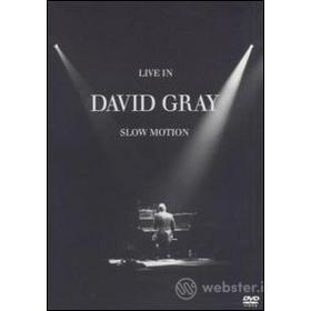 David Gray. Live In Slow Motion