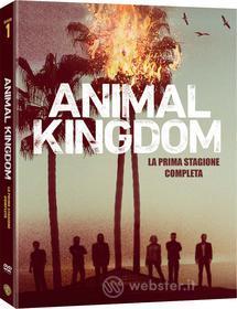 Animal Kingdom - Stagione 01 (3 Dvd)