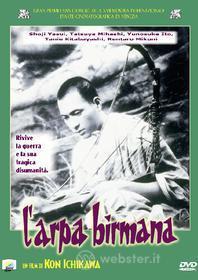 L' arpa birmana