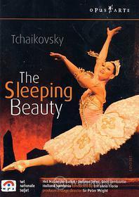 Piotr Ilyich Tchaikovsky. Sleeping Beauty. La bella addormentata nel bosco (2 Dvd)