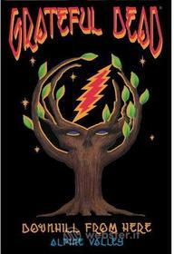 Grateful Dead - Downhill From Here