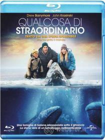 Qualcosa Di Straordinario (Blu-ray)
