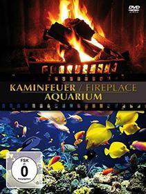 Fireplace / Aquarium