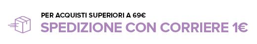 Spedizione con Corriere a solo 1 euro