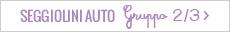 Seggiolini Auto Gruppo 2/3